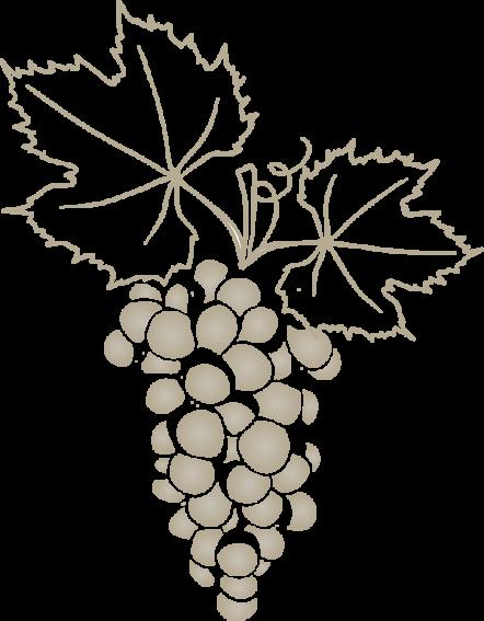 grapevine2